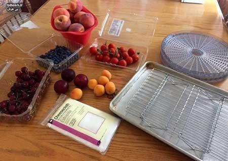 اصول خشک کردن میوه ها در آفتاب