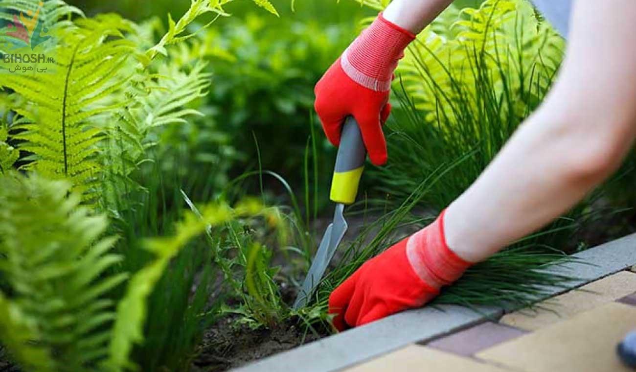 حیاط تکونی و مهیا کردن باغچه برای فصل بهار