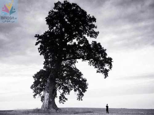 ترفندهای عکاسی خلاقانه با موبایل