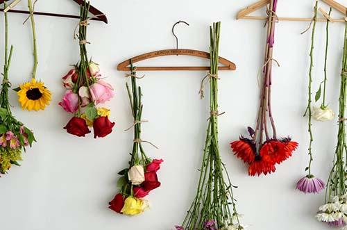 خشککردن گل طبیعی با شیوه های ساده